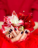 Manicured cupped hands holding flowers Stock Photos