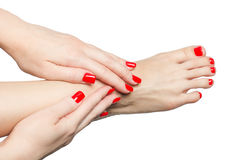 Manicured female feet and hands with red nails isolated on white Royalty Free Stock Images