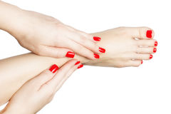 Manicured female feet and hands with red nails isolated on white Royalty Free Stock Image