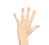 Manicured female hand gesture number five fingers up Stock Photos