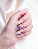 Manicured female hand. Studio shot Royalty Free Stock Photography