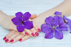 Manicured fingernails and flowers Stock Photo