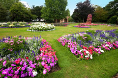 Manicured flower garden with colorful azaleas. Stock Image