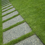 Manicured grass Stock Images