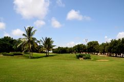 Manicured grass and palm trees at golf and country club Karachi Pakistan. Karachi, Pakistan - September 10, 2016: A view of the maintained lawn and gardens with royalty free stock photography