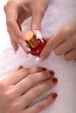 Manicured Hands and Nail Polish Stock Photography