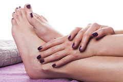 Manicured hands stroke bare feet. Painted with dark nail polish by gray towel on plush purple spa table royalty free stock photography
