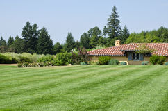 Manicured Lawn in a Garden Stock Photos