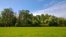 Manicured lawn in a neat Park with trees in the background. Manicured lawn in a neat Park with bright trees in the background Royalty Free Stock Photography