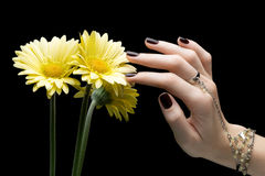 Manicured Nail with Black Matte Nail Polish. Manicure with Dark. Nailpolish and flower isolated on Black Background Royalty Free Stock Photos