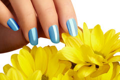 Manicured nails with natural nail polish. Manicure with blue nailpolish. Fashion manicure. Shiny gel lacquer. Spring Royalty Free Stock Photography