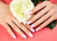 Manicured nails with pink nail polish. Manicure with nailpolish. Fashion art manicure, shiny gel lacquer. Nails salon Stock Photography