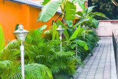 A manicured tuin verfraaide rotsenweg, prachtig sierplanten, en bloemstruiken Voorgazon van een het leven huis royalty-vrije stock fotografie