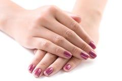Manicured weibliche Hände Lizenzfreies Stockbild
