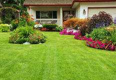 Manicured Yard. A finely manicured yard shows its summer colors Stock Image