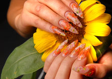 Manicures Stock Image