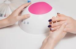 Manicurist руки красивой хорошо выхоленной женщины держит лампу для геля польский и демонстрирует идеальный охват его пурпура кли стоковые изображения rf