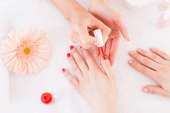 Manicurist in action. Stock Images
