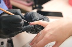 The manicurist in black latex gloves covers the client`s nails with a colored gel polish. In the beauty salon royalty free stock photos