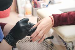 The manicurist in black latex gloves covers the client`s nails with a colored gel polish royalty free stock image