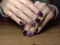 The manicurist excellently made her work a beautiful manicure with a polish gel on her hands and the client is happy Royalty Free Stock Images