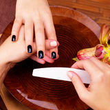 Manicurist master  makes manicure on woman's hands Stock Photos