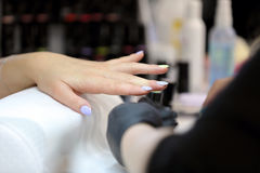 Manicurist master makes manicure on young woman hand Royalty Free Stock Image