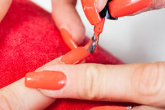 Manicurist master makes manicure on young woman hand Stock Image