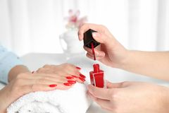 Manicurist painting client`s nails with bright polish in salon. Closeup royalty free stock photos