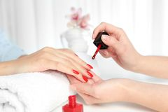 Manicurist painting client`s nails with bright polish in salon. Closeup stock photos