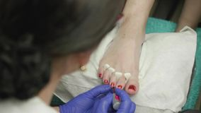 Manicurist puts red nail polish on client`s nails on legs.