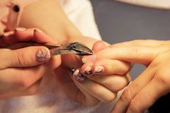 Manicurist at training courses shows students how to handle nails with the help of nippers cuticles before applying Royalty Free Stock Photos