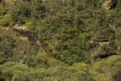 Manier aan Nationale Pas dichtbij Wentworth Falls zoals die van Fletchers-Vooruitzicht wordt bekeken, dichtbij Katoomba, Blauwe B stock foto's