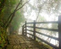 Manier aan paradijs, reis aan Arwah-Holen in Meghalaya Royalty-vrije Stock Foto's