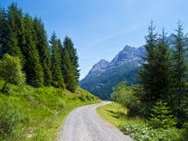 Manier door alpiene vallei Stock Afbeeldingen