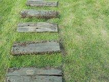 Manier van hout op gras Royalty-vrije Stock Fotografie
