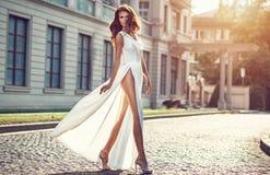 Manierfoto van mooie elegan womanl met het donkere haar dragen Stock Fotografie