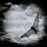 Maniez la batte dans le ciel nuageux foncé, fond de veille de la toussaint Images stock