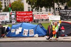 Manifestante de Westminster Fotos de archivo libres de regalías