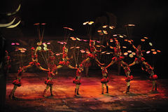 Manifestazione acrobatica - teatro di Chaoyang, Pechino Fotografia Stock Libera da Diritti