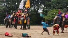Manifestazione di tema dell'elefante all'azienda agricola di messa a terra e del coccodrillo dell'elefante di Samphran in Tailand stock footage