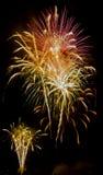 Manifestazione/Guy Fawkes Night dei fuochi d'artificio Fotografie Stock