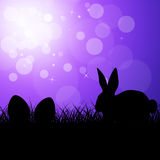 Manifestazioni Bunny Rabbit And Copy-Space delle uova di Pasqua Fotografia Stock Libera da Diritti