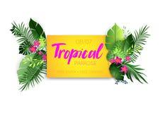 Manifesto caldo tropicale Fotografie Stock