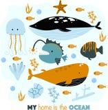 Manifesto con gli animali di mare la mia illustrazione di casa di vettore, ENV illustrazione di stock