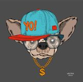 Manifesto con l'immagine di un ritratto del cane in cappello hip-hop Illustrazione di vettore immagine stock