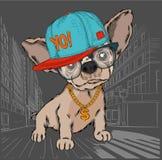 Manifesto con l'immagine di un ritratto del cane in cappello hip-hop Illustrazione di vettore fotografie stock