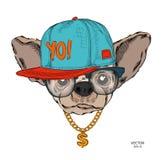 Manifesto con l'immagine di un ritratto del cane in cappello hip-hop Illustrazione di vettore fotografia stock