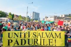 Manifesto contra o desflorestamento abusivo Fotos de Stock Royalty Free