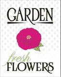 Manifesto dei fiori freschi del giardino immagine stock